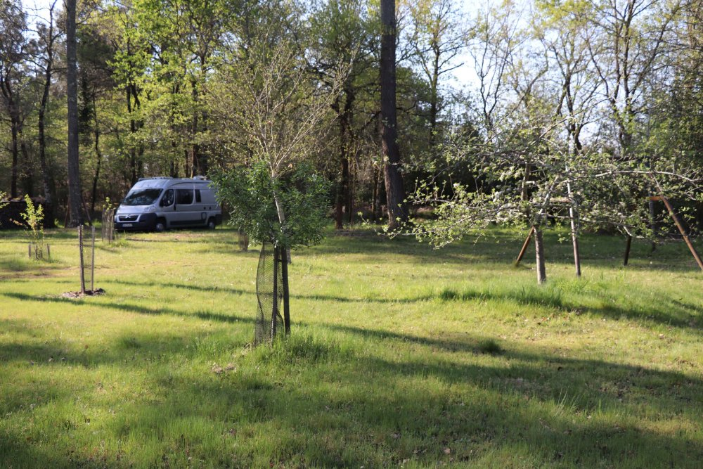 Aire camping-car à Saint-Symphorien (33113) - Photo 2